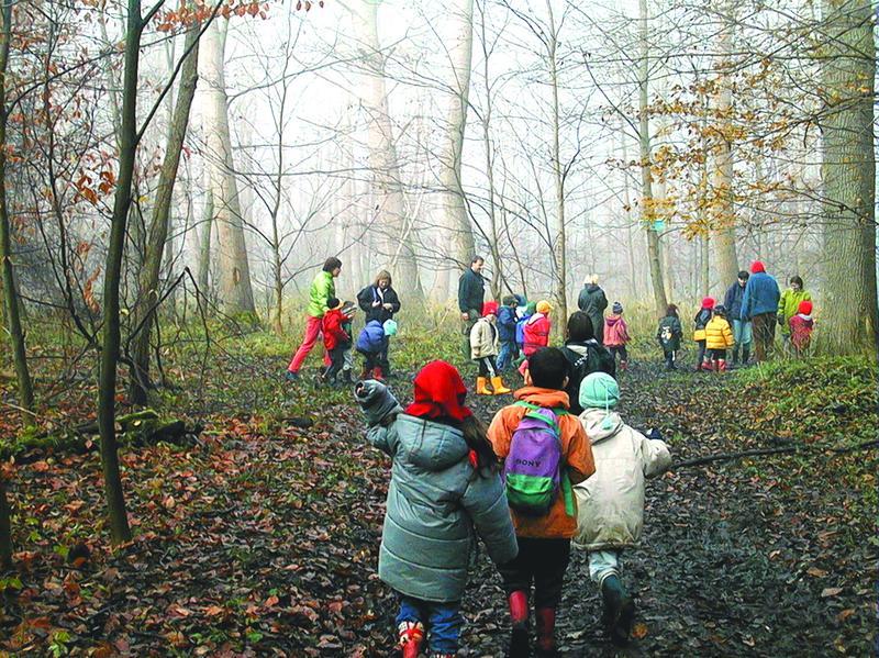 photo d'une visite dans l'Ill*Wald